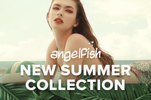 Angelfish New Summer
