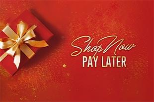 Shop Now, Pay Later 2019